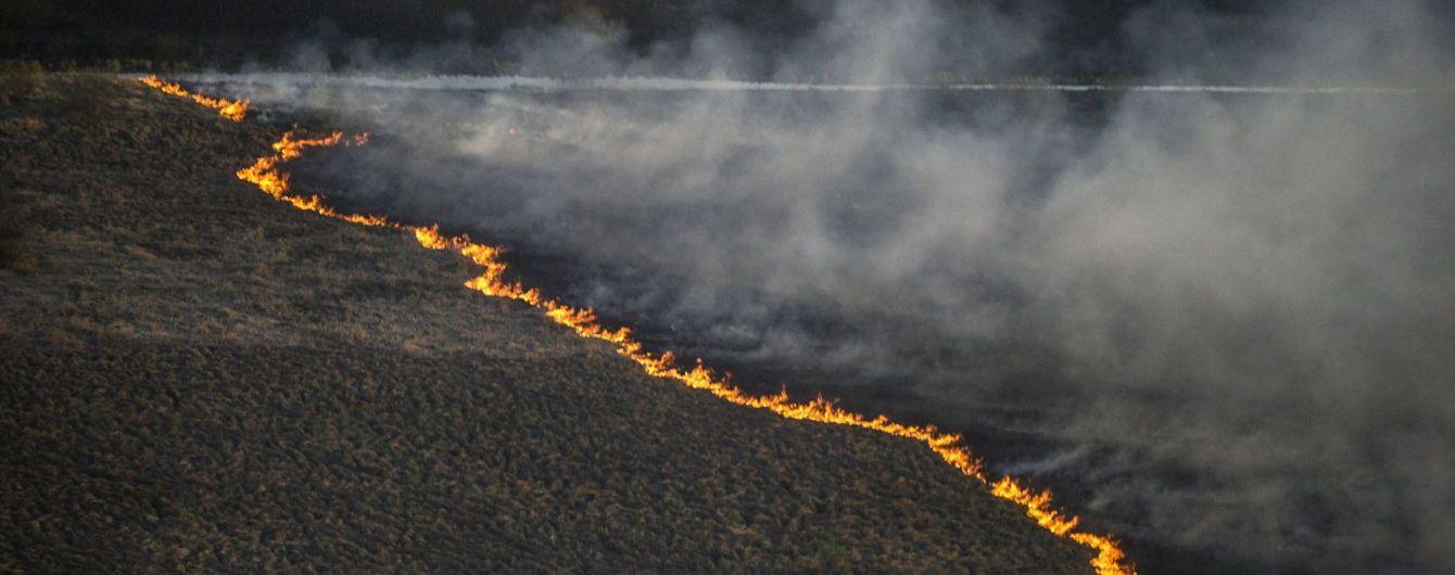 """""""600 при норме в 20"""": пожарным возле ЧАЭС посоветовали поскорей выбрасывать свою обувь после выхода из леса"""