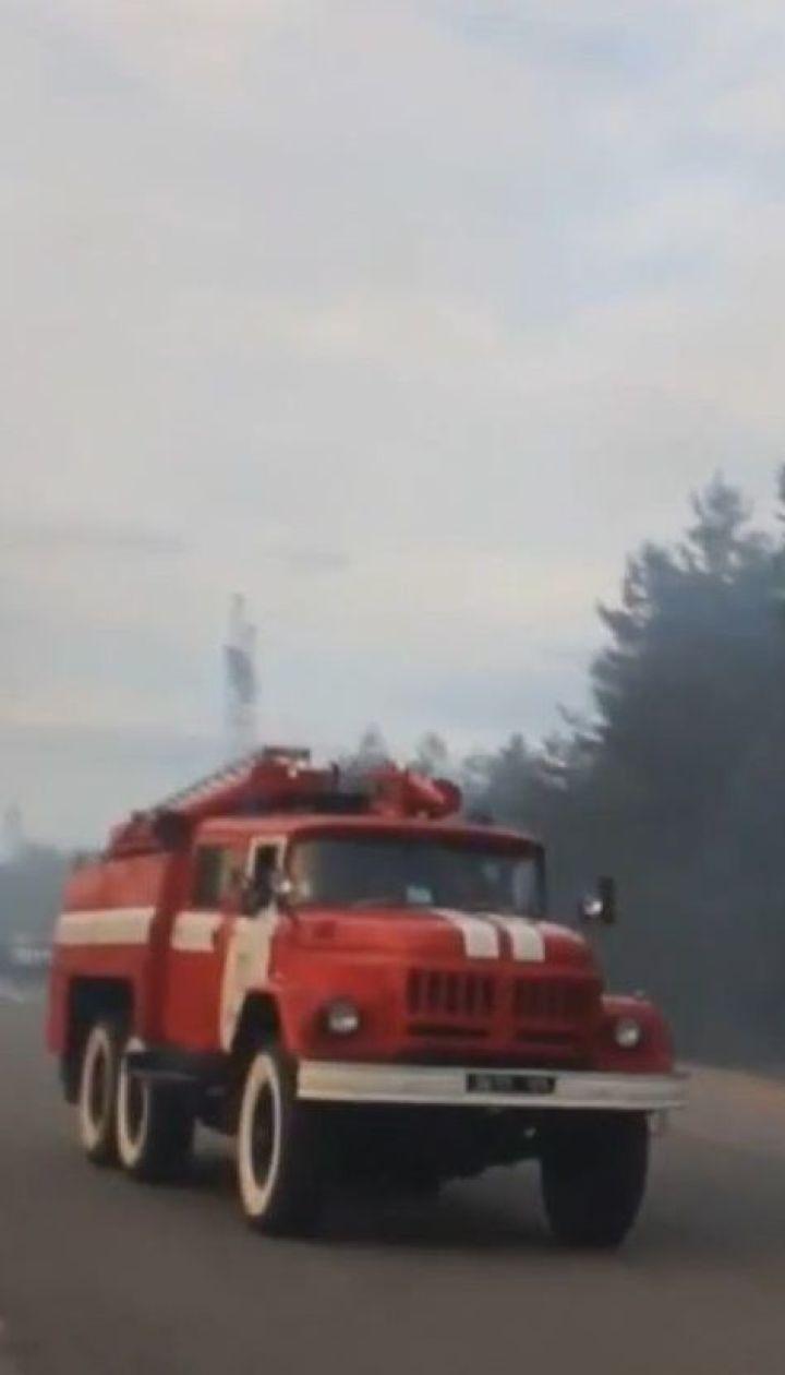 В Чернобыле до сих пор горит Рыжий лес