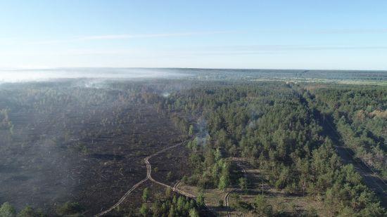 Радіаційний фон у нормі. Пожежники продовжують гасіння пожежі у Чорнобильській зоні