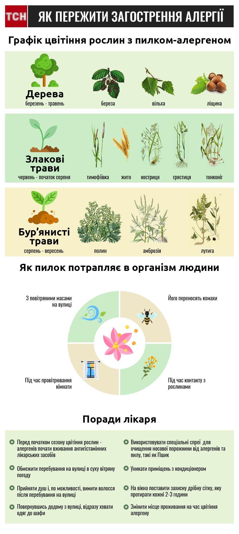 Як врятуватися від алергії на літні рослини?