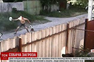 На Харьковщине несколько питбулей растерзали случайного прохожего на улице