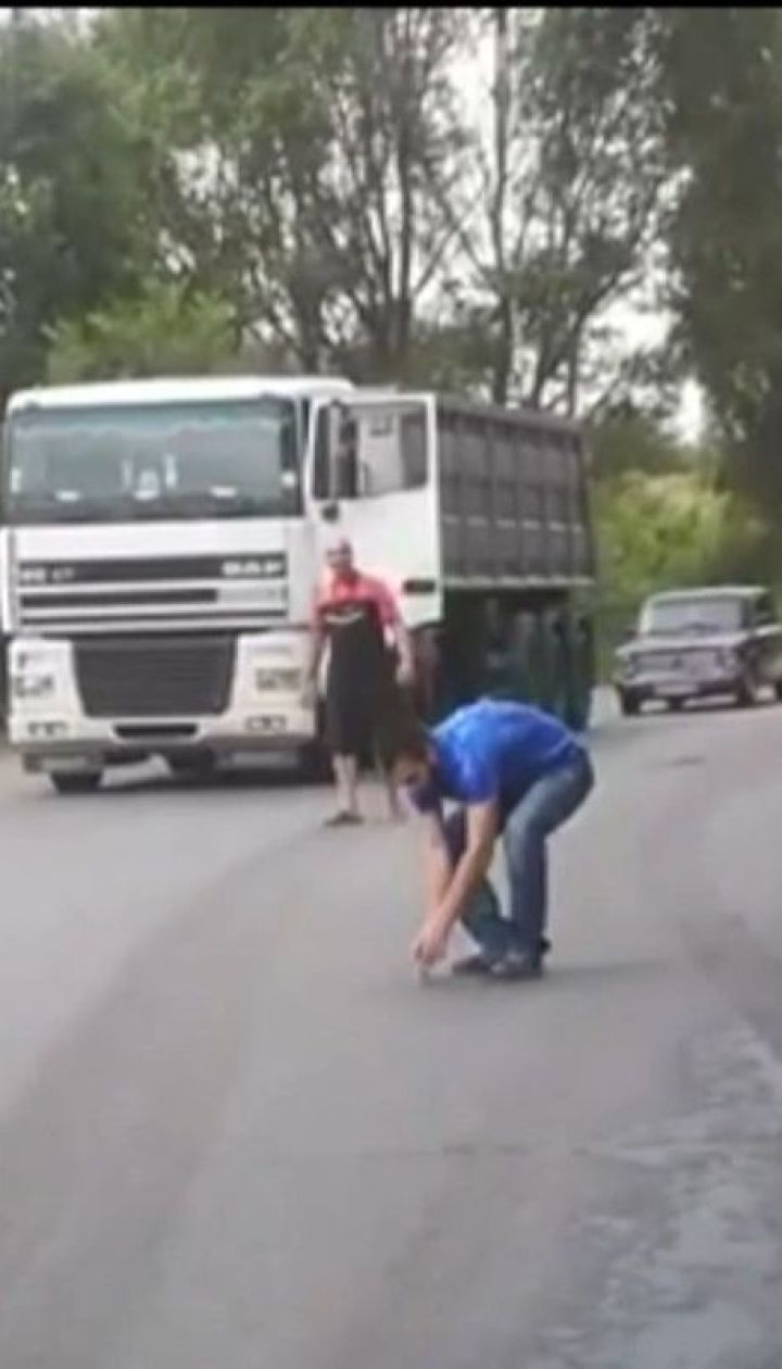 На Дніпропетровщині вантажівки зупинилися на дорозі, аби врятувати пташеня