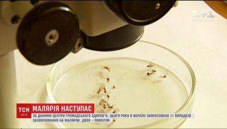 """В Україні реєструють все більше випадків так званої """"завезеної"""" малярії"""