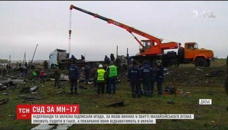 Виновники авиакатастрофы на Донбассе могут отбывать наказание в Украине