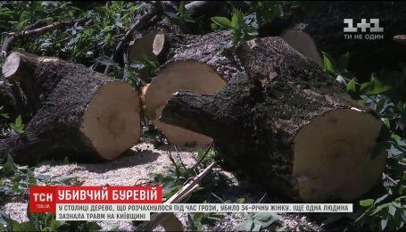 Ураган, что промчался Киевом и областью, унес жизнь 34-летней женщины