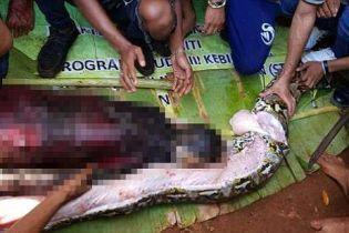 В Індонезії пітон повністю проковтнув жінку. Змію довелося розрізати, щоб дістати тіло