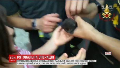 Итальянские спасатели достали из вентиляционного отверстия в стене котят