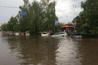 Вырванные елки и парализованное движение транспорта: в Луцке бушует непогода