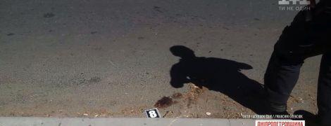 В Никополе таксист сбил на переходе ребенка, потому что перепутал его с собакой