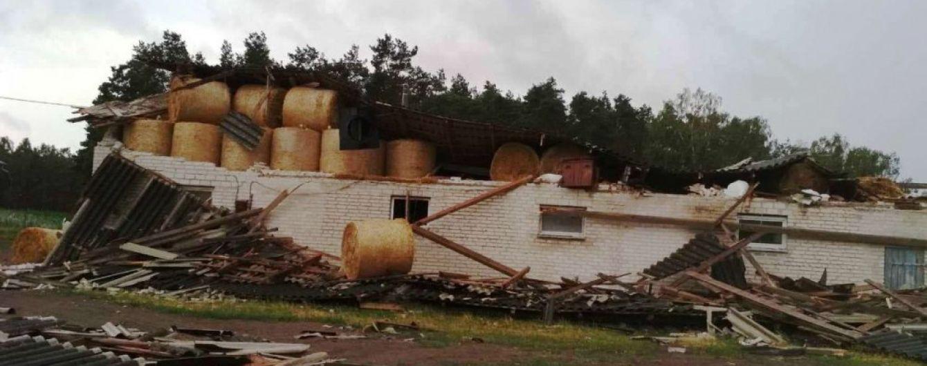 В Польше ураган убил заместителя мэра
