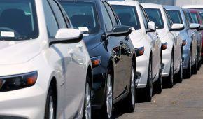 В Украине почти 60 тысяч автомобилей на еврономерах находится с нарушением сроков