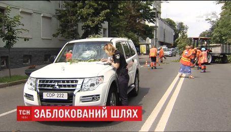В Києві акація завалилась прямісінько на проїжджу частину вулиці Грушевського