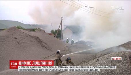 Жители села в Одесской области почти сутки не могли свободно дышать из-за возгорания шелухи подсолнечника