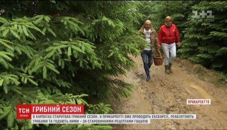 В Прикарпатье проводят грибные экскурсии и кормят по старинным рецептам гуцулов