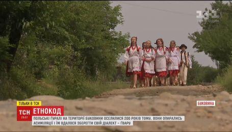 """""""Етнокод"""": ТСН віднайшла польський аналог українських гуцулів"""