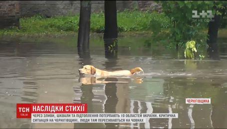 Удар стихии. В Украине ликвидируют последствия непогоды