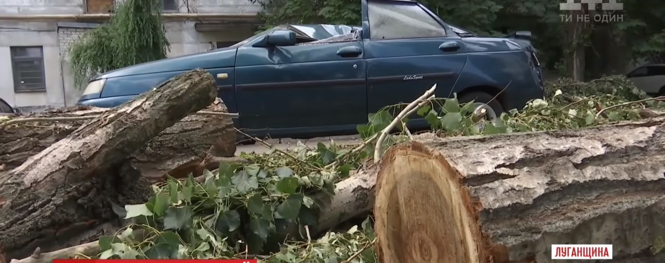 Тополя на машині і дах за 200 метрів від будинку: у Рубіжному ще півтижня будуть ліквідовувати наслідки буревію