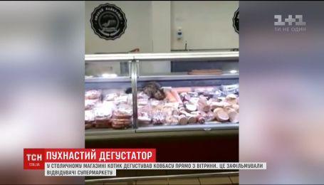 В Киеве кот устроил дегустацию колбас на прилавке супермаркета