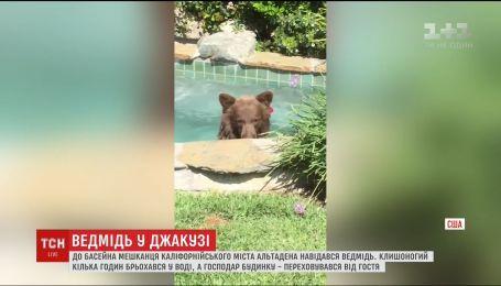 В Калифорнии медведь пришел искупаться в бассейне к одному из жителей города Альтадена