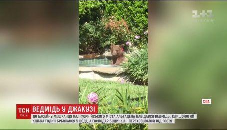 Медведь на несколько часов оккупировал бассейн жителя Калифорнии