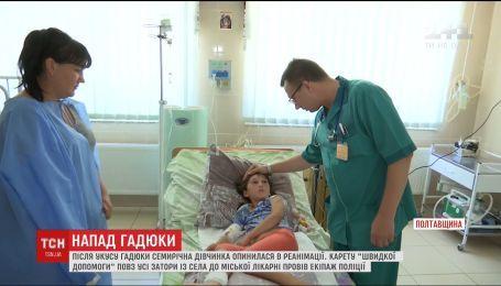 7-летняя девочка, которую укусила гадюка, находится в реанимации
