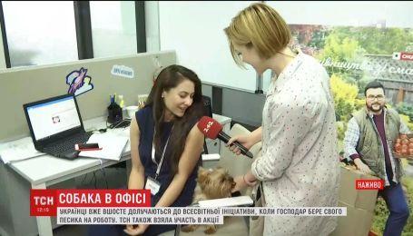 """Работники """"1+1 медиа"""" присоединились к всемирной акции """"Возьми собаку на работу"""""""