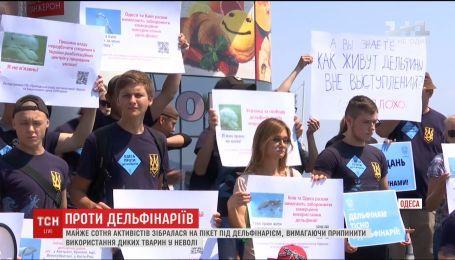 Почти сотня одесситов собрались на пикет, требуя закрытия местного дельфинария