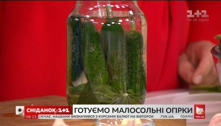 Як швидко і просто приготувати малосольні огірки - експерт з харчових технологій