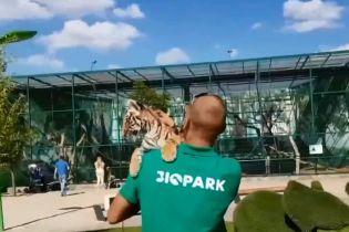 Одеситів обурила експлуатація маленького тигреняти для фото з туристами
