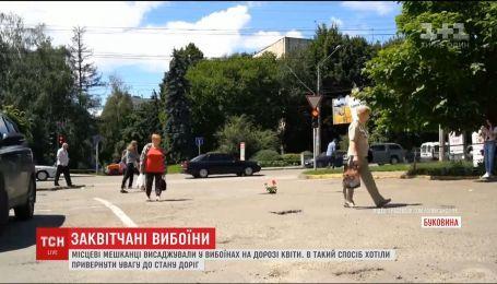 Выбоины на дорогах Черновцов активисты украсили цветами