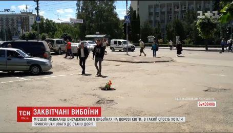 Герань высадили в выбоинах на дорогах Черновцов