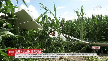 Слідчі розглядають версії падіння легкомоторного літака на Сумщині