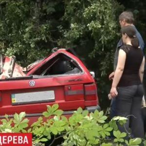 Во Львове рухнул огромный каштан и раздавил два автомобиля