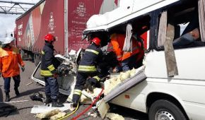 Кривава ДТП на Житомирщині. У ДСНС розкрили подробиці аварії