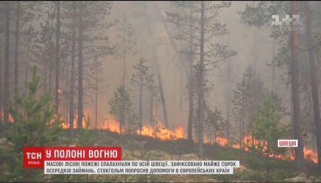 От полярного круга до Балтийского моря. Массовые лесные пожары вспыхнули в Швеции