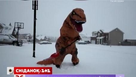 Японію та США засипає аномальною кількістю снігу