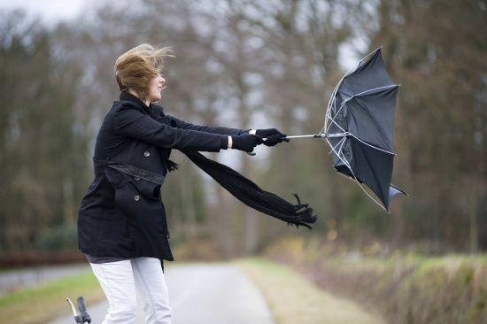 Пориви вітру швидкістю до 30 м/с: в Україні оголосили штормове попередження