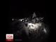 Дві людини загинули у масштабній аварії на Львівщині