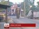 Слон зруйнував понад сто будинків у селищі в Індії