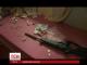 У Вінницькій області правоохоронці вилучили арсенал боєприпасів