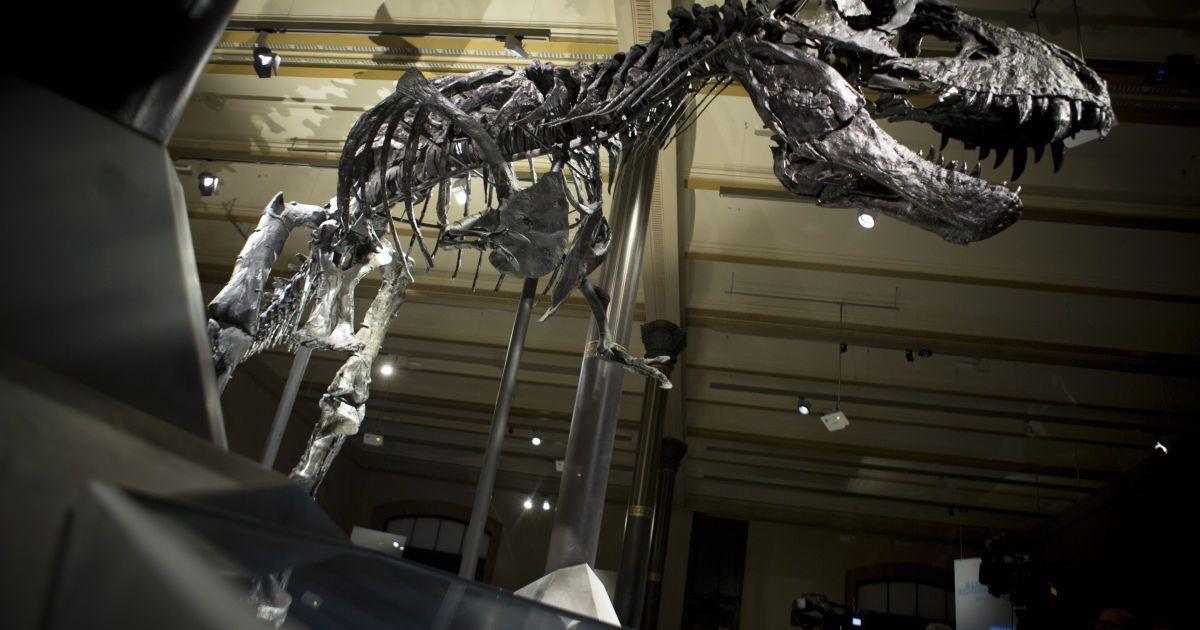 Динозаври повернуться у 2050 році - вчені