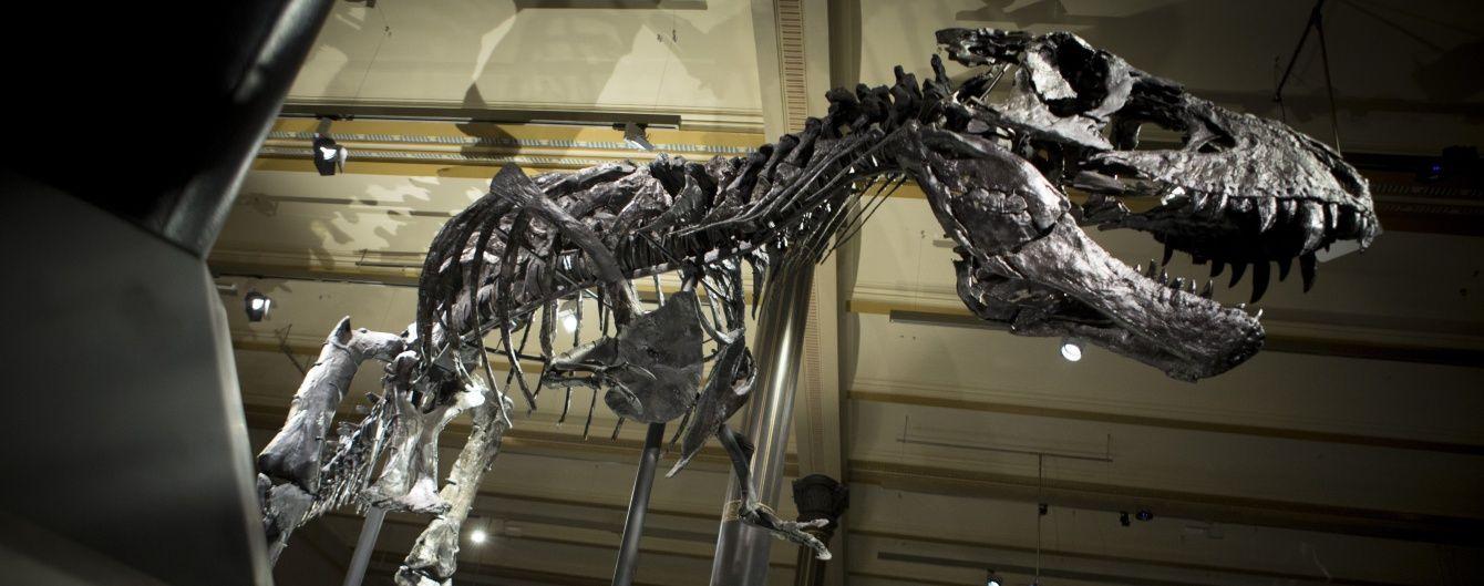 В пустелі Гобі знайшли скелет великого динозавра - ЗМІ