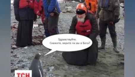 Пользователи Интернета высмеяли встречу главы русской православной церкви с пингвинами