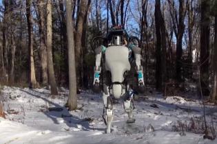 """Разработчики из Google создали жуткого двуногого дроида и """"поиздевались"""" над ним"""