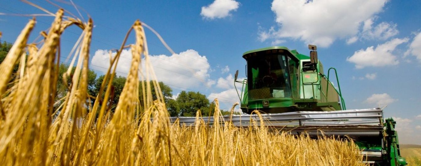 Аномальное тепло в Украине: как повлияет отсутствие осадков на будущий урожай