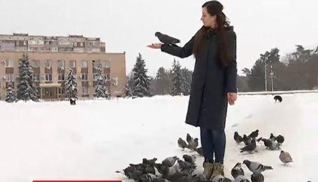 Мой путеводитель. Украинка