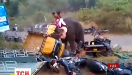 В Индии слон, которого привели на фестиваль развлекать людей, вырвался и разгромил машины