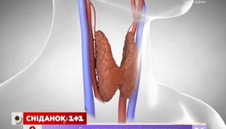 Как вовремя выявить заболевания щитовидной железы
