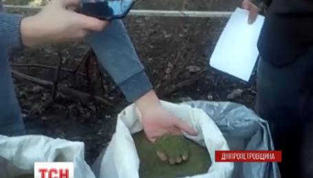 Рекордну партію марихуани знайшли у звичайного пенсіонера на Дніпропетровщині