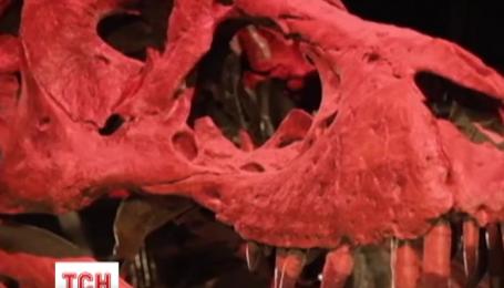 Ученые из США открыли новый вид динозавров